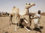 Juhosudánski povstalci prepadli pastierov, stovku popravili