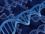 Vydražia list s prvým popisom DNA
