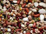Doprajte si fazuľu, pomôže s trávením i neustálym hladom