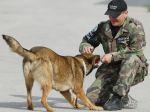 Otcovi napísal list na rozlúčku a zmizol, zachránil ho pes