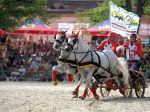 Slovenskú mekku chovu koní si pozreli tisíce ľudí