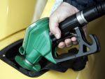 Ceny palív v EÚ sa uplynulý týždeň takmer nemenili