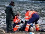 Vo vodách Hrušovskej zdrže objavili mŕtvolu