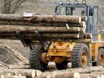 Pre šafárenie v Lesoch SR žiada Zsolt Simon hlavy manažérov