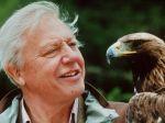 Známeho prírodovedca Attenborougha čaká operácia srdca