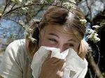 Do dvoch rokov bude mať alergiu každý druhý Európan