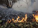 Vojenský les na Záhorí bol opäť v plameňoch