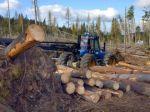 Spracovatelia uvítali Národný program využitia dreva
