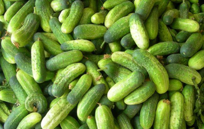 12 zdravotných výhod konzumácie uhoriek