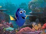 Pokračovanie animáku Hľadá sa Nemo posunuli na rok 2016