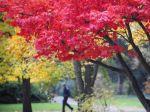 Leto na severnej pologuli končí, jeseň príde o deň skôr