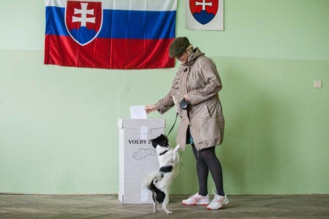 Skončili sa krajské voľby, účasť bola nízka