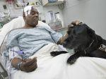 Pes zachránil svojho slepého pána, ktorý spadol na koľajnice metra
