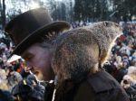 Svišť Phil predpovedal v USA ďalších šesť týždňov krutej zimy