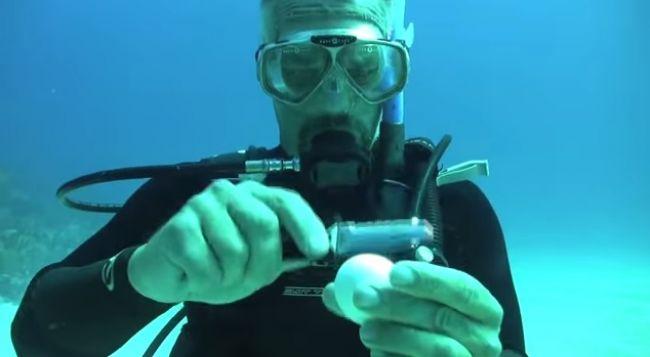 Video: Čo sa stane s rozbitým vajíčkom pod vodou
