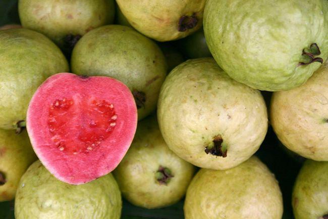 Guava –  exotické ovocie doplní až päťkrát viac vitamínu C, než pomaranč