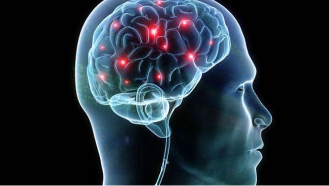 Tieto potraviny škodia nášmu mozgu
