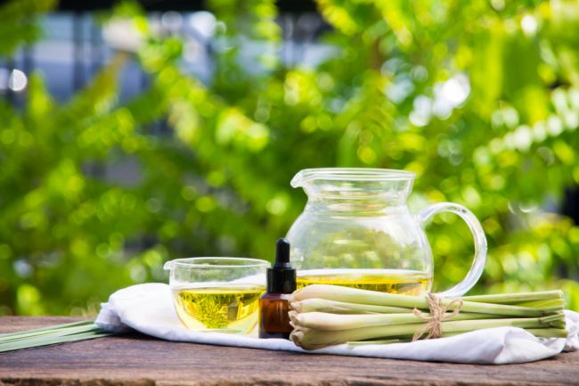 Olej z citrónovej trávy: 6 využití pre zdravie a domácnosť