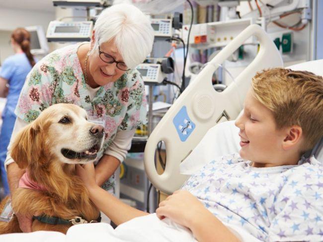 Ako dokáže pes pomôcť vášmu zdraviu