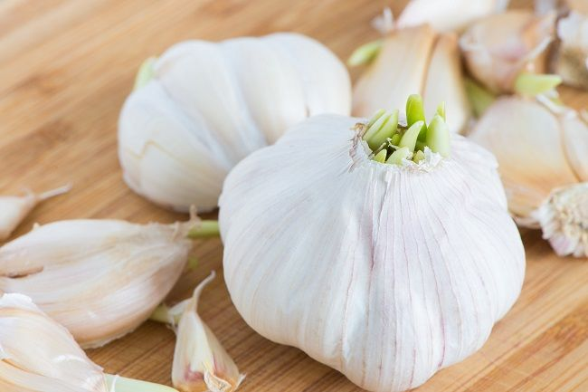 Nevyhadzujte naklíčený cesnak! Dokáže zabiť rakovinové bunky