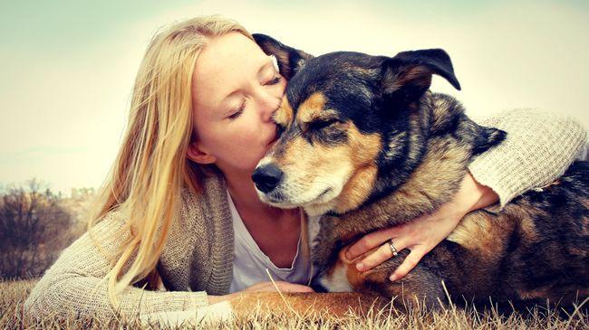 Psy vedia, kedy sa k ich majiteľom ostatní ľudia správajú zle
