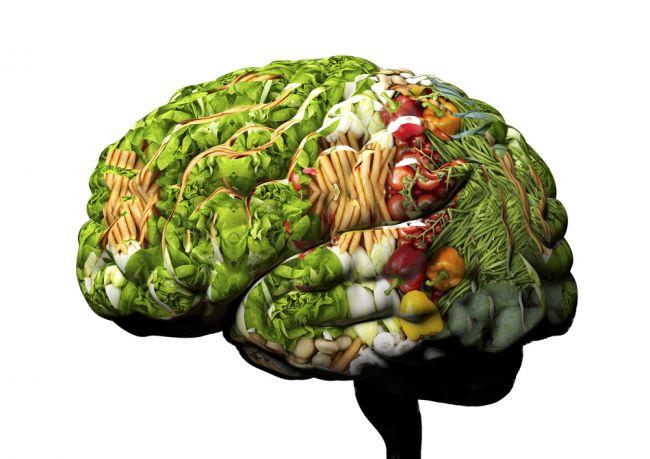 Dve porcie tejto zeleniny dokážu znížiť vek vášho mozgu o 11 rokov