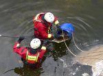 Po úniku neznámej látky do Kysuce uhynulo asi pol tony rýb