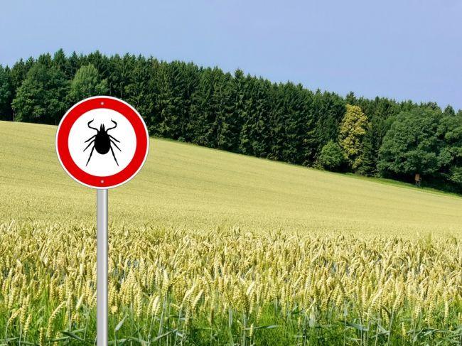 V prírode treba dať pozor na kliešte, infikované sú najmä v tejto oblasti