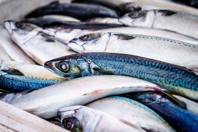 Video: Nechutné zábery vám pripomenú, prečo príprave rýb treba venovať dostatok času