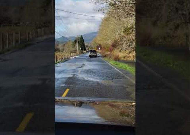 Video: Takúto divú zver na ceste ste ešte nevideli