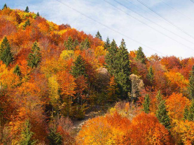 Počasie: Aký je november, taký bude nasledujúci máj