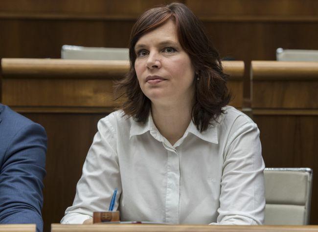 Opozícia: Okolo demisie Lajčáka sa robí politické divadlo