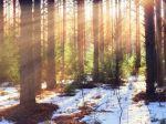 Predpoveď počasia: Mrazy, keď v decembri ochabnú, znamenajú zimu zlú