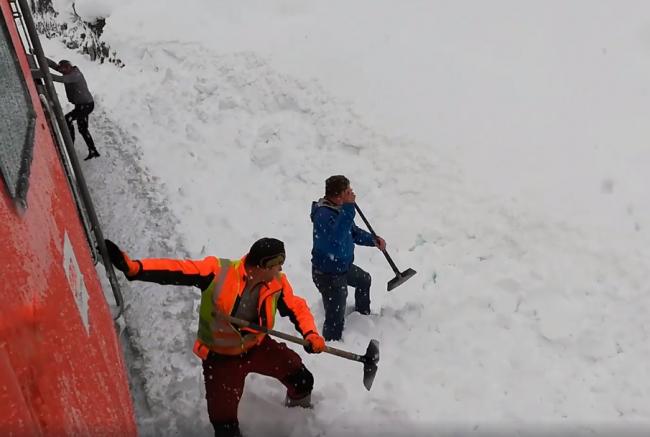 Video: Železničiari zachraňovali kamzíka zavaleného snehom