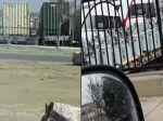 Video: Muž tajne natočil podozrivé praktiky vojenskej základne