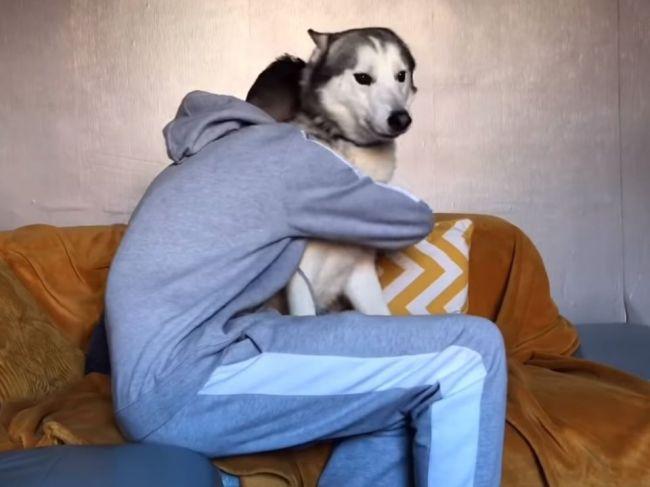 Video: Pes verzus fena: Ako budú reagovať na objímanie s človekom?