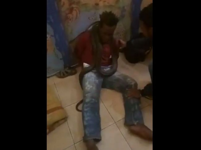 Video: Indonézska polícia sa ospravedlnila za používanie hada pri vypočúvaní