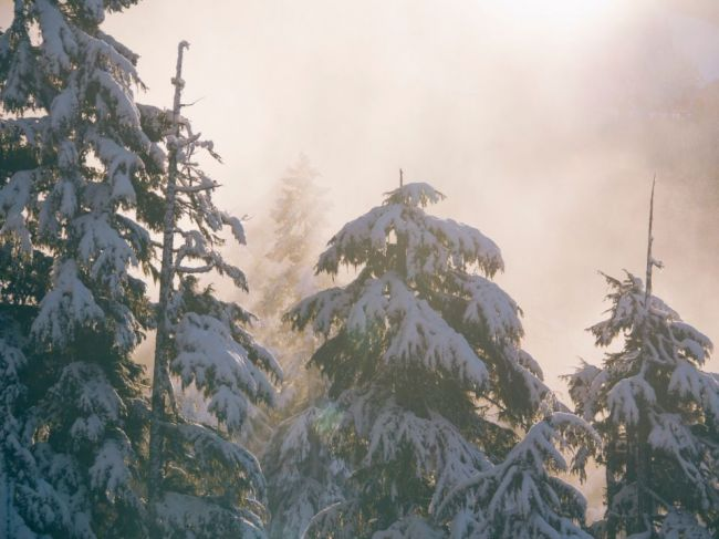 Predpoveď počasia: V utorok môžeme miestami čakať sneh