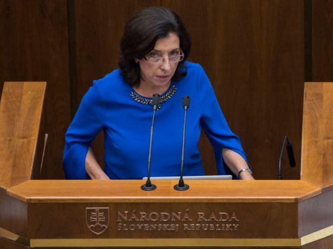 Lesy okolo Bratislavy sa rúbu nezákonne, Zemanová podala trestné oznámenie