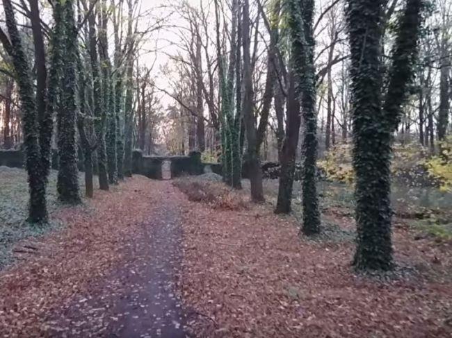 Video: Bohnický cintorín bláznov patrí k najdesivejším miestam v Európe