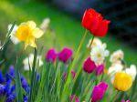 Prvý jarný deň: Príchod jari patril k najväčším sviatkom ľudstva