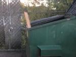 Video: Školník musí každé ráno otvoriť kontajner. Títo nezbedníci ho tam vždy čakajú