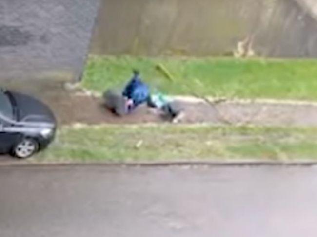 Video: Pri chodcovi stáli všetci svätí – ledva sa stihol vyhnúť padajúcej vetve