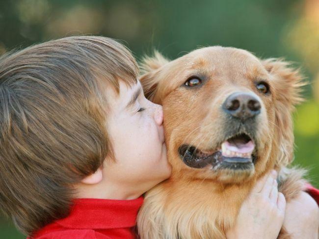 5 ochorení, ktorými vás môže nakaziť domáci miláčik