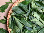 5 rastlín, ktoré majú preukázateľne protirakovinové účinky