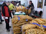Zemiaky sú na Slovensku takmer o 60 % drahšie ako vlani