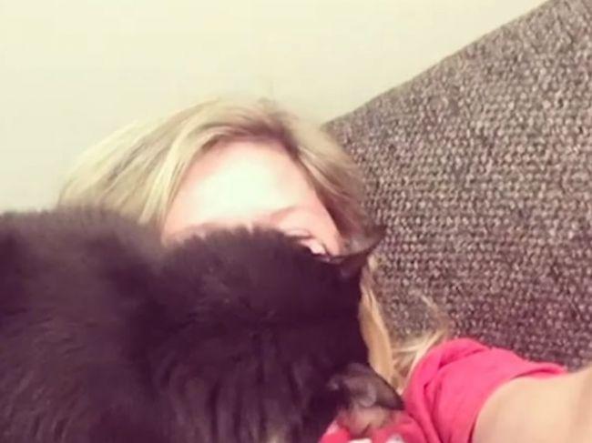 Video: Mačka neznáša spev svojej majiteľky. Takto jej to dáva najavo