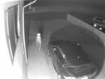 Video: Bezpečnostná kamera zachytila desivé stvorenie. Tu sú teórie, čo to môže byť