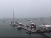 Video: Muž natáčal prístav počas búrky. Takýto šok však nečakal