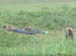 Video: Muži si chceli pospať na tráve. Takýto drsný budíček nečakali